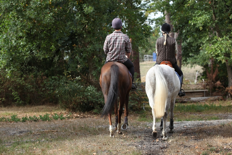 2836656-couple-riding-in-the-countryside